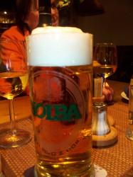 100_8069 holba pivo