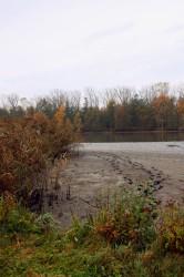 Bohdaneč - výlov - vypuštěný rybník - IMG_8728