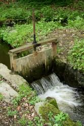 přehrazený potok - IMG_1741