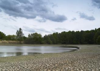 sucho foto_rybník