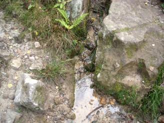 voda kameny