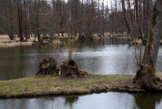 zámecký park Blatná - IMG_1024