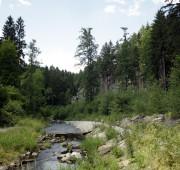 Černá - Novohradské hory - IMG_0554