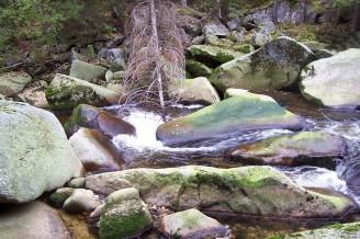 100_7104 drobný vodní tok