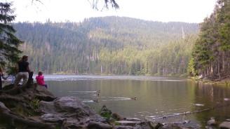 LČR jezero Šumava