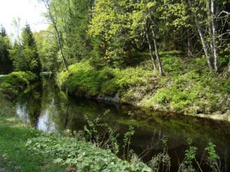 tok řeka P5100699