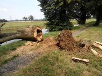 řeka Morava - varování strom kácení - IMG_20140728_135056547