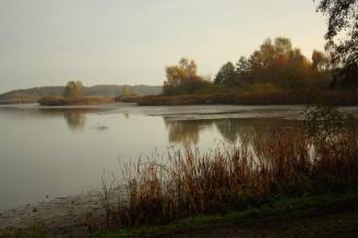 Bohdaneč - výlov - vypuštěný rybník - IMG_8709