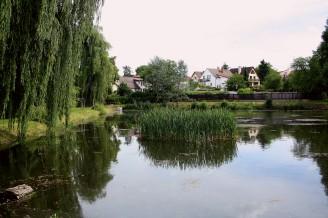rybník - obec - IMG_3320