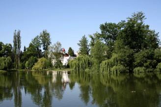rybník obec - IMG_0515