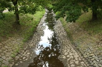 sucho - málo vody - IMG_2638