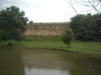 rybník a pole