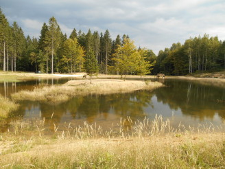 Lesy ČR nádrž Pustý potok v Raspenavě