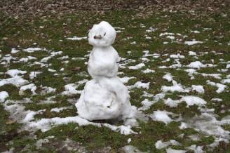 tající sněhulák na trávě - IMG_0946