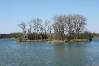 krajina - ostrov - rybník - IMG_4940