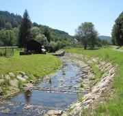 malý vodní tok - IMG_5940