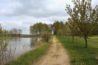 krajina cesta rybník - IMG_6176
