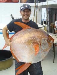 ryba opak - NOAA