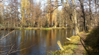 rybnik zamecky Breznice2