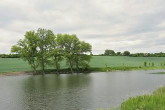 retence nádrž rybník - IMG_7534