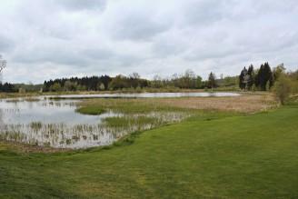 rybník tráva louka - IMG_6160