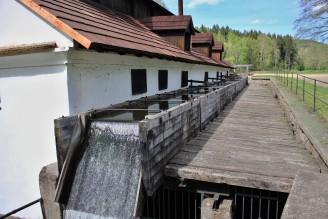 vodní hamr Dobřív - IMG_6533_-_kopie
