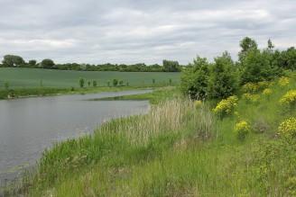 krajina rybník retenční nádrž rybník - IMG_7535