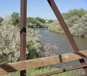 Animas_River_Bridge