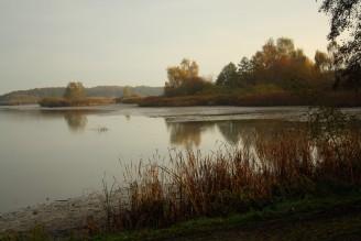 Bohdanečský rybník - IMG_8709