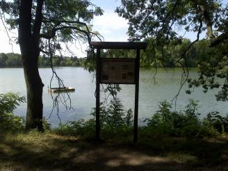 Podleský rybník 2 - červenec 2015