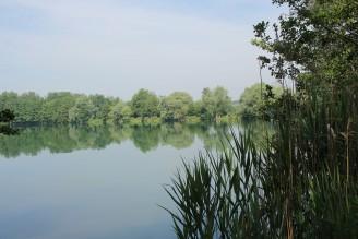 jezero Poděbrady - IMG_8264