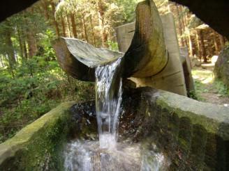 odběr vody - P5100725