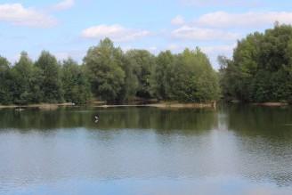 písečák - rybník - IMG_2793