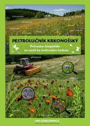 pestrolucnik_krkonossky