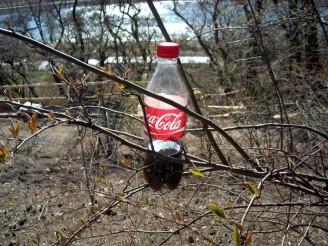 Coca - cola ve křoví DSCN2284