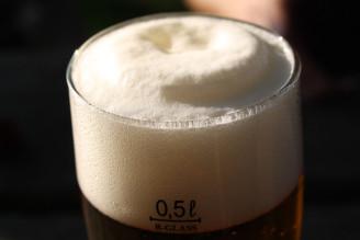 pivo 1