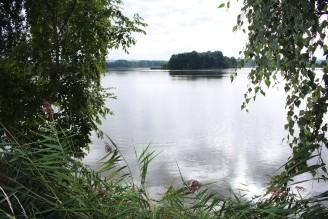 rybník žabakor - IMG_2681