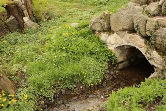 potok mostek květiny u vody - IMG_6210