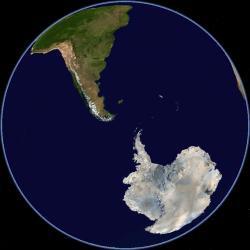 osel antarktida
