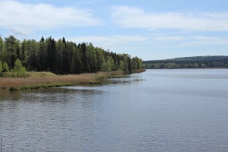 rybník les Padrť - IMG_6399
