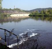 vyčištěná Vltava - IMG_4559