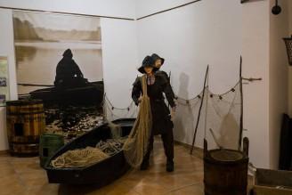výstava kapr sumec