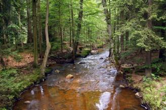 vodní tok - Klabava