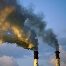 oxid uhličitý osel