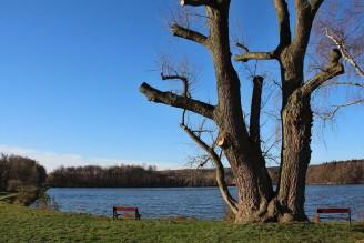 rybník Svitavy