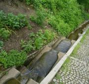 voda podél chodníku - 05_ivana_gold