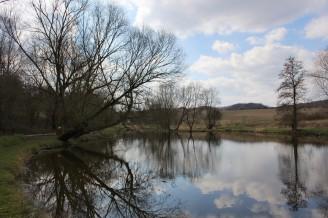 krajina - rybník - IMG_3744