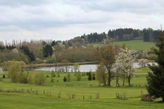 krajina louka rybník - IMG_6189