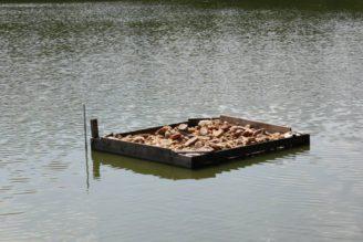 chléb - voda - rybník