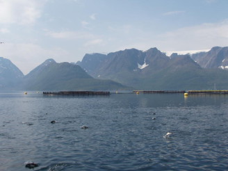 farma Norsko chov ryb